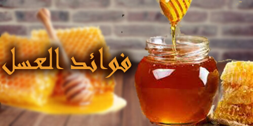 فوائد العسل واستخداماته