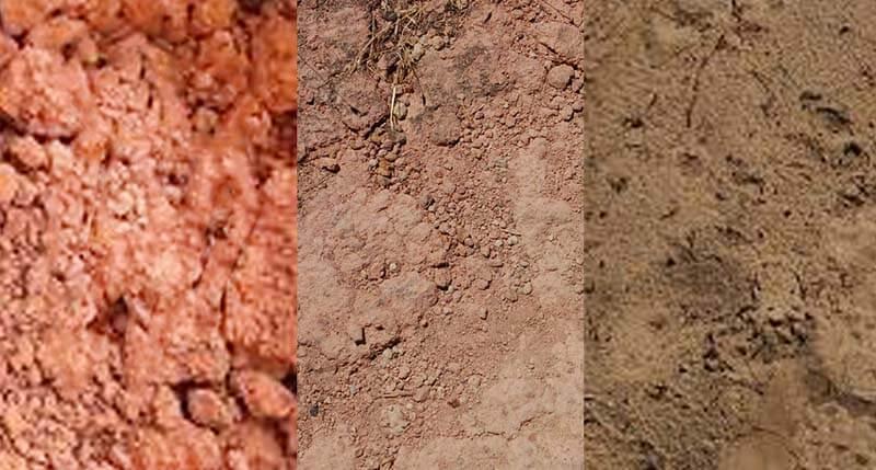 أنواع الترب